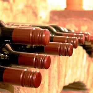 como hacer vinos